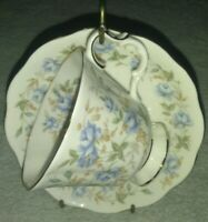 Royal Albert Bone China England Teacup & Saucer Rose Chintz Series Blue Gown vtg