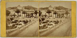 France, Toulon, Place de Palmiers Vintage stereo card, Tirage albuminé  8,