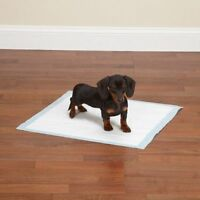 Puppy Training Pads Odour Resistant Highly Absorbent Dog Training Wee 5 Pack