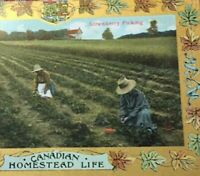 Postcard, 1910 Strawberry Picking Homestead Gold Western Canada, Vintage P23