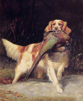 Oil painting dog English Setter with Pheasant in landscape canvas FREE SHIPPING
