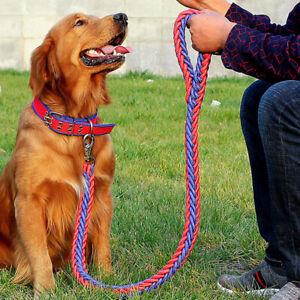 Pet Towing Rope Dog Collar Supplies Adjustable Studded Hunter Cat Collar Rope