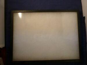Riker Specimen Mount 1 x 12 x 16 in Glass Window