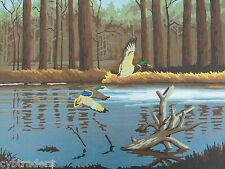 Mallard Ducks  Paint By Number Scene  Refrigerator / Tool  Box  Magnet