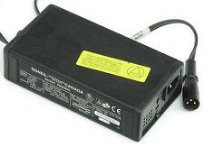 LEAF creoscitex caricabatteria-per foglia su ubicazione g12v16ah10ep BATTERIE -