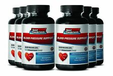 Hawthorn Berry Extract - Blood Pressure Support 820mg - Improve Circulation 6B