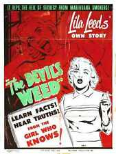 Wild Weed Poster 03 A3 Box Canvas Print