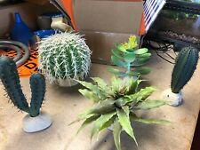 Reptile Terrarium Cactus Succulents Plants Landscape - set of 5