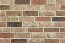 Handform-Verblender WDF BH1023 rot bunt Klinker Vormauersteine Backsteine