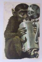 """""""Personifiziert, Affe, Bierkrug, Bier""""  1899  ♥"""