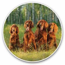 2 x Vinyl Stickers 10cm - Irish Red Setter Family Dog Cool Gift #3389