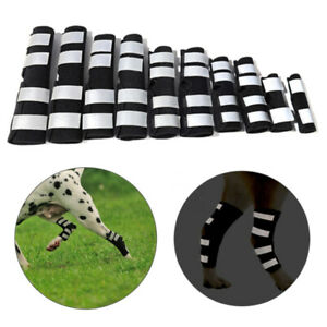 Pet Knee Pads Dog Support Brace for Leg Hock Joint Wrap reflective Recover Legs