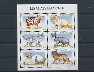 LO56307 Comoros pets animals cats good sheet MNH