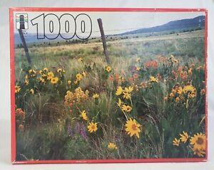 Rainbow Works Jigsaw Puzzle Near Long Creek Oregon 1000pc 22x28inch