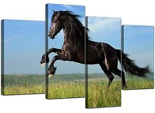 Horse Canvas Wall Art Pictures Set Prints Girls Bedroom Blue XL 4129