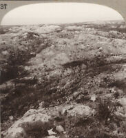 WW1 Stereoview. The Battlefields of Loos, Scene of the British Offensive in 1915