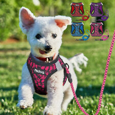 Reflective Dog Harness and Leash Set Soft Mesh Padded Pet Cat Puppy Vest Yorkie