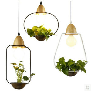 Hanging Garden Plant pendant light ceiling lighting Creative Chandelier Gift