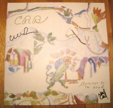 CHRIS ROBINSON BROTHERHOOD SIGNED BAREFOOT IN THE HEAD VINYL ALBUM with proof