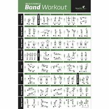 Resistance Band/Tube Exercise Poster Laminated - Total Body Workout Personal ...