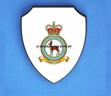 ROYAL AIR FORCE SCHOOL OF PHYSICAL TRAINING WALL SHIELD (FULL COLOUR)