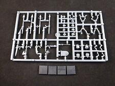 Tomb Kings Skeleton Warriors on Plastic Frame