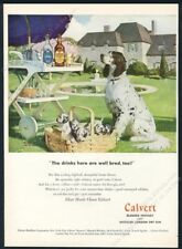 1947 English Setter & puppy dogs Tom Lovell art Calvert whiskey vintage print ad