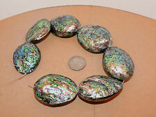 Paua Abalone Large Shell Beads New Zealand 7 piece strand over 1 inch (11969)