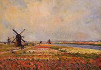 Art Oil painting Claude Monet - Fields of Flowers and Windmills near Leiden