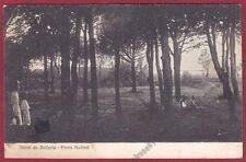 RIMINI BELLARIA IGEA MARINA 70 PINETA NADIANI Cartolina viaggiata 1925