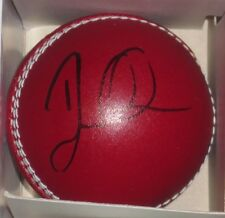 DAVID WARNER SIGNED RED CRICKET BALL UNFRAMED + PHOTO PROOF & C.O.A