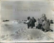 1955 Press Photo Eskimo Hunters In White Parkas Sneak Up On A Group Of Walruses