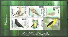 Kosovo Stamps 2018. Fauna: Birds. Falco, Upupa, Sturnus, etc. Souvenir sheet MNH
