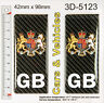 2x GB CARBON UK Coat of Arms Number Plate Gel Side Stickers Decal Badges Domed