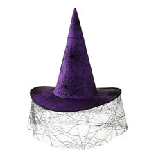 Purple Witch Hat Veil Spiderweb Fancy Dress Halloween Party Cosplay Costume