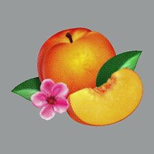 PHOENIX - BANKRUPT! CD ALBUM (APRIL 22nd)