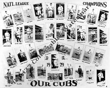 1929 CHICAGO CUBS NL CHAMPIONS WORLD SERIES 8X10 TEAM PHOTO HORNSBY HACK WILSON