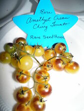 Amethyst Cream Cherry Tomato Seeds! Loads of Sweet Tomatoes! Comb. S/H