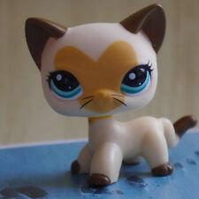 "Littlest pet shop LPS #3573  MINI 2"" FIGURE TOY cantaloupe Cat kitty"