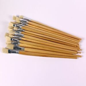 Long Handled Paint Brush Easy Hold Hog Bristle Flat Tip 60 Mixed Applicactors