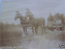 EARLY RPPC MAN ON INTERESTING WAGON PULLED BY TWO HORSES REAL PHOTO B&W POSTCARD