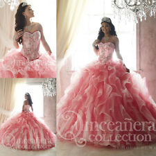 Elegant Hot Pink Quinceanera Dress Party Evening Ball Prom Pageant Wedding Gown