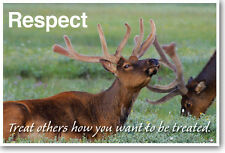 Treat Others How You Want To Be Treated - Respect - New Animal Classroom Poster
