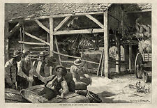 FIRST BALE OF COTTON, COTTON GIN HOUSE TEXAS 1875 Ginning, Planters Buyers Sales