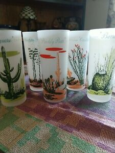 Blakely Gas and Oil Arizona Vintage Drinking Glasses 5 cactus
