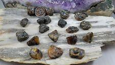 Amber Rough - Raw Amber Stone - Small - Natural Black Amber