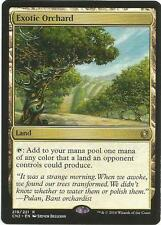 Exotic Orchard RARE Conspiracy: Take the Crown MTG MINT UNPLAYED
