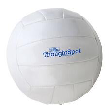 Regulation Size Volley Ball