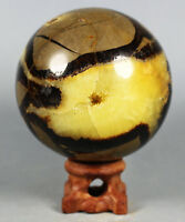 Polished DRAGON SEPTARIAN Calcite GEODE SPHERE Ball Mineral Specimen Madagascar