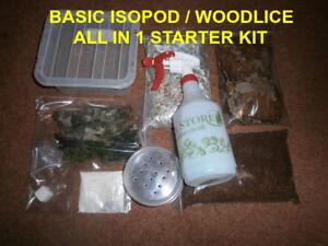 Basic Isopod / Woodlice  Starter Kit - Set Up